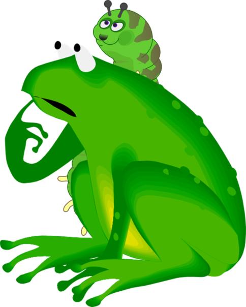 jubiwormfrog.png